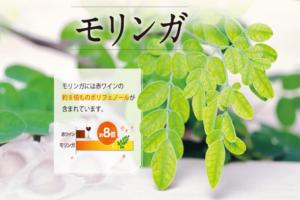 沖縄産モリンガ